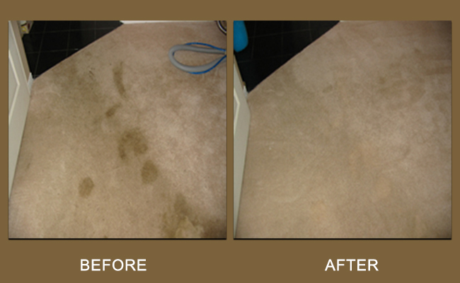 carpet-cleaning-spills