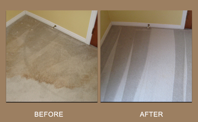 cleaning-water-spots-carpet