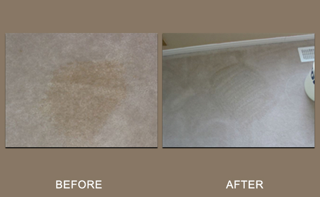 coffee-carpet-cleaning