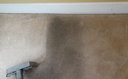 Rental Deposit Carpet Cleaning