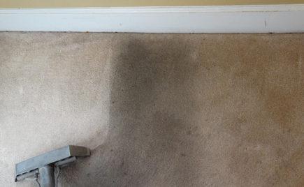 Rental Deposit Carpet Cleaning