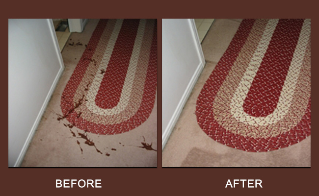 sanitize-carpet